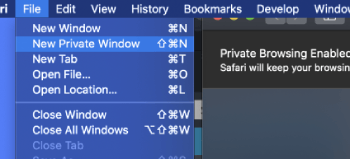Using private mode in Safari browser